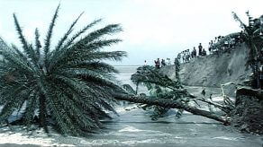 Char… the No Man's Island